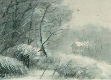 Vinterskymning, 70x50