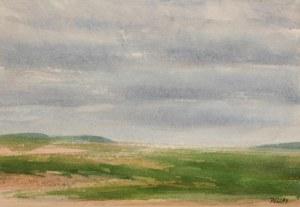Sand, gräs och himmel, 24x16 800:-
