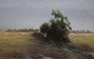 Buskage, 20x14, 800:-